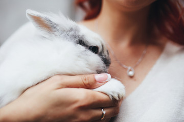 The charming bride keeps a rabbit
