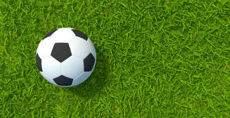 3D rendering, Football soccer on grass soccer field background.