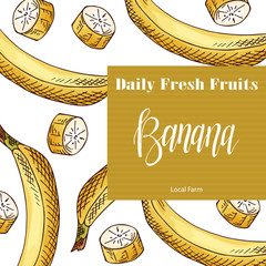 Food design with fruit. Hand drawn sketch of banana. Organic fresh product for card or poster design for cafe, market. Colorful vector illustration