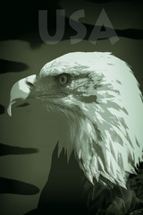 USA military supremacy. Posterized eagle image. Camouflage colors