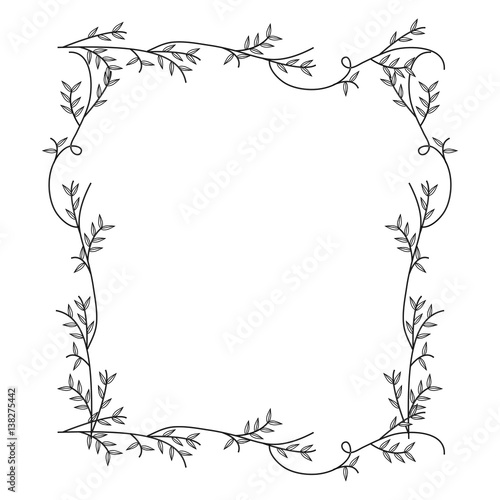 frame with silhouette creepers nature design vector illustration