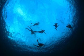 Scuba dive diver diving