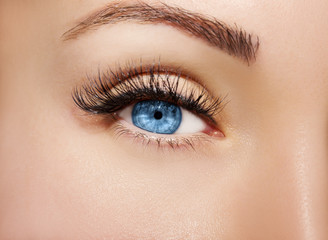 Blue Eye Makeup. Beautiful Eyes Make up detail, perfect beauty eyebrows