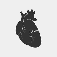 heart human vector