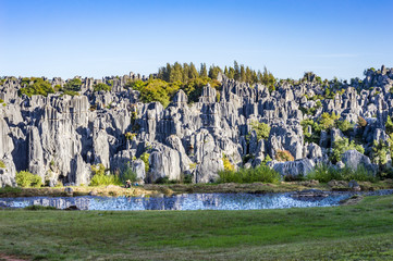 Stone Forest in Shilin, Kunming, Yunnan province, China