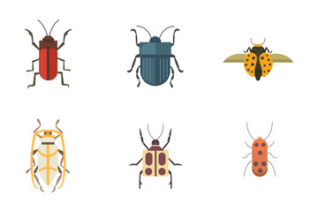 Set of insects flat style vector design icons. Collection nature beetle and zoology cartoon illustration. Bug icon wildlife concept