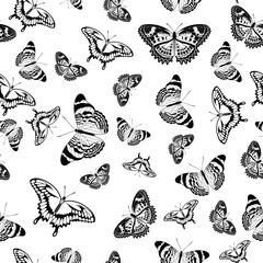 Black and White vector butterflies texture