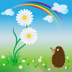 Surprised hedgehog looks at a big daisy in springtime