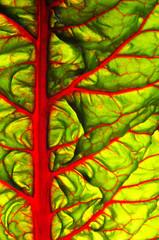 beet leaves.