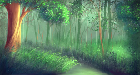 Forest / illustration painting