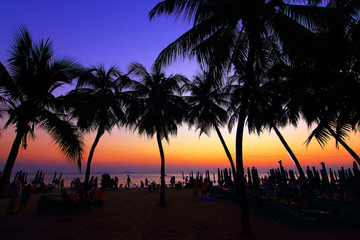 Dark silhouettes of palm trees and beach umbrella with amazing cloudy sky sunset at tropical beach in Pattaya Thailand. Coconut Tree with Beautiful and romantic sunset in Maldives island. color filter