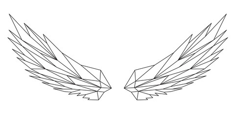 Le ali aperte, design geometrico di linee nere sullo sfondo bianco