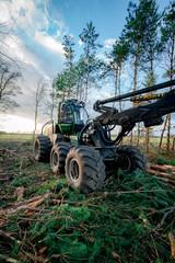 Forstwirtschaft - Bäume fällen und zerlegen mit Holzvollernter, Hochformat