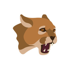 cougar head vector illustration style Flat