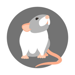 rat vector illustration style Flat