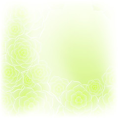 Beautiful green rose flower background