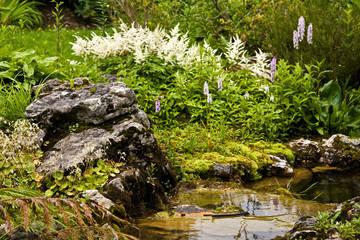 White and purple flowers with stream in botanical garden, Geneva, Switzerland