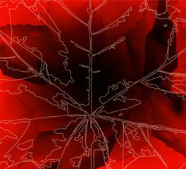 Abstract background. Leaf veins. Stone cubes. Explore banner.  Red and black tones.