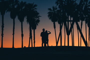 Silhouette of couple by palm trees photographing sunset