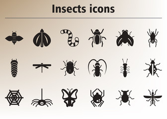 Collection of stylish vector icons insects