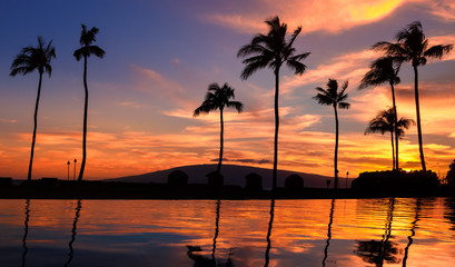 Wall Mural - Red hawaiian sunset over pool