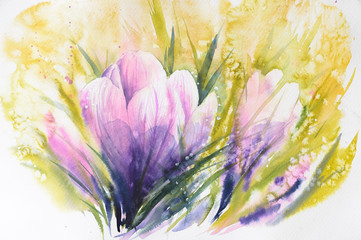 Crocus -first spring flowers.Picture created with watercolors.
