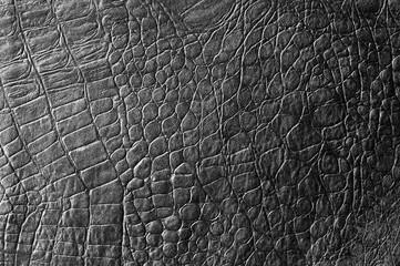 Skin crocodile black. texture