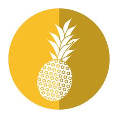 sweet pineapple tropical fruit shadow vector illustration eps 10