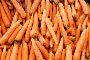 Pictures of organic and healthy carrots on greengrocery