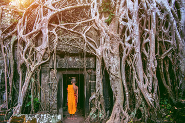 Wall Mural - The monks and Trees growing out of Ta Prohm temple, Angkor Wat in Cambodia.