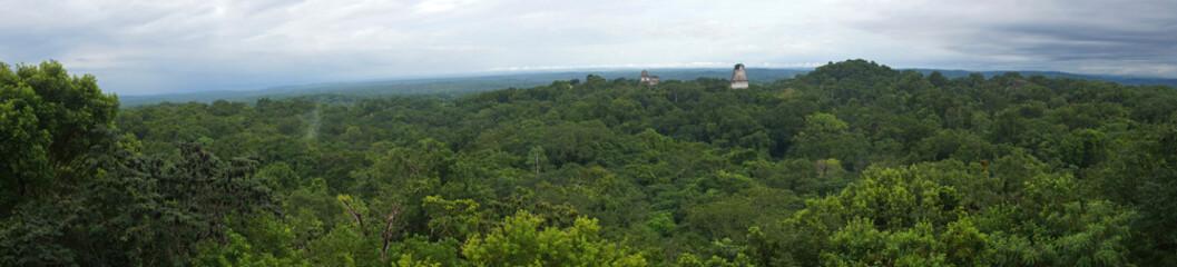 Tikal Pyramids / Tikal, Guatemala