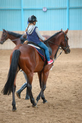 little girl riding a horse. First lessons of horseback on arena