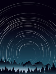 deep pine forest landscape and star trail when midnight