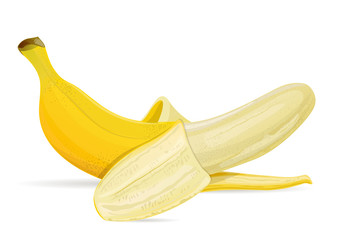 Isolated banana on white background vector illustration.