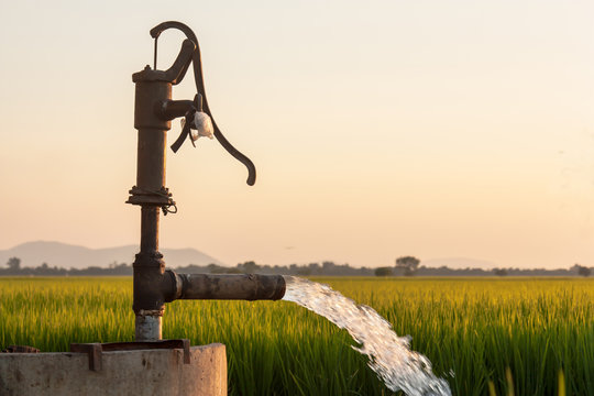 Pumping water into the fields
