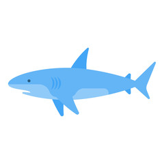 Vector flat style illustration of white shark.