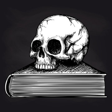 Black and white sketch of human skull on book on blackboard background. Vector illustration