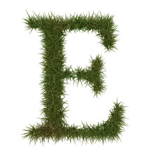 E Green grass alphabet