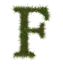 F Green grass alphabet