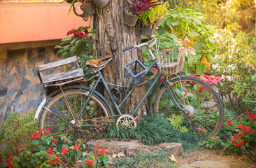 Vintage old bicycle with garden background