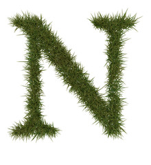 N Green grass alphabet