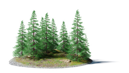 serene landscape with pine trees on a small rocky island isolated on white background
