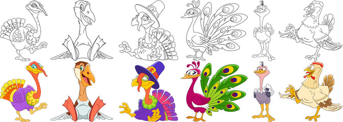 Cartoon animals set. Collection of farm birds. Turkey on Thanksgiving Day, goose (duck), peacock (peafowl), ostrich (emu), hen. Coloring book pages for kids.