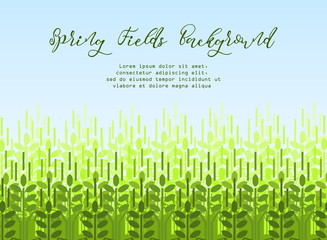 Wheat grain background. Spring agro pattern