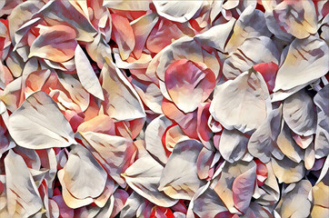 fresh and soft rose petals. Floral background on canvas texture