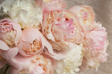Background with bright pink peonies