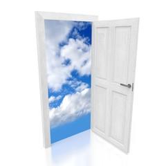 3D open door concept