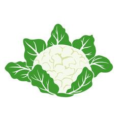 Logo Fruit Design 5 Concept