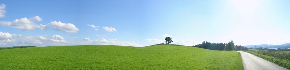 Landscape view.