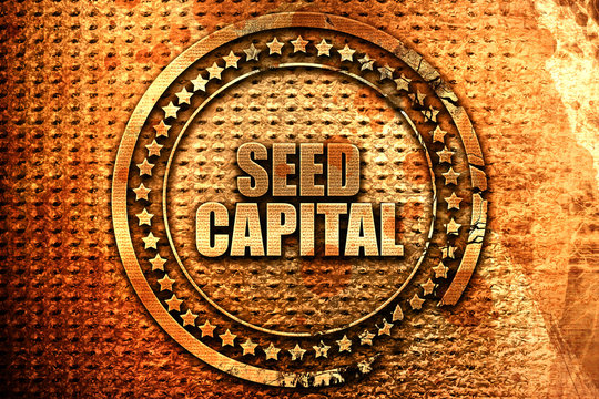 seed capital, 3D rendering, metal text